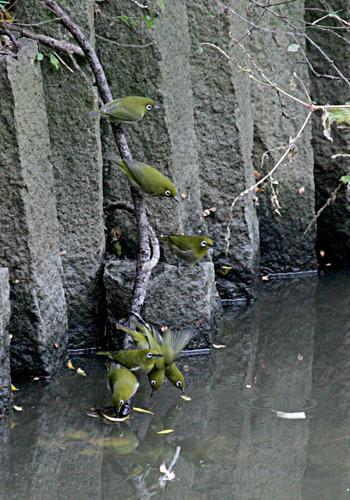 20071217_8077.jpg